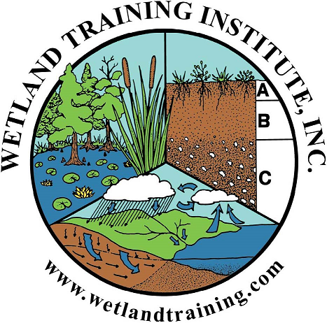 Wetland Training Institute, Inc.