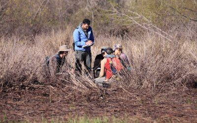 group delineates wetland in Texas plain