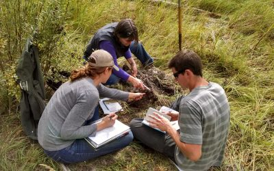participants study hydric soil for wetland delineation