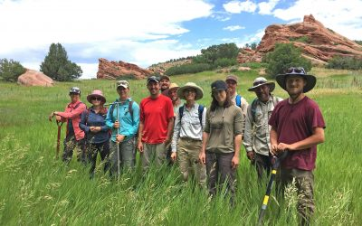 advanced hydric soil participants stand in field in front of rocks