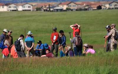 student group standing in field learns wetland delineation